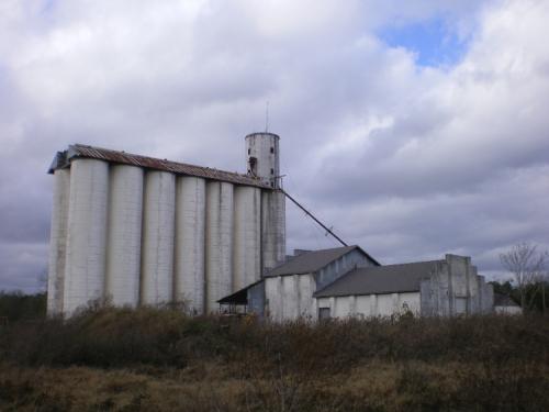 Fitzgerald GA Ben Hill County Benny Anderson Grain Elevator Photograph Copyright Brian Brown Vanishing South Georgia USA 2008