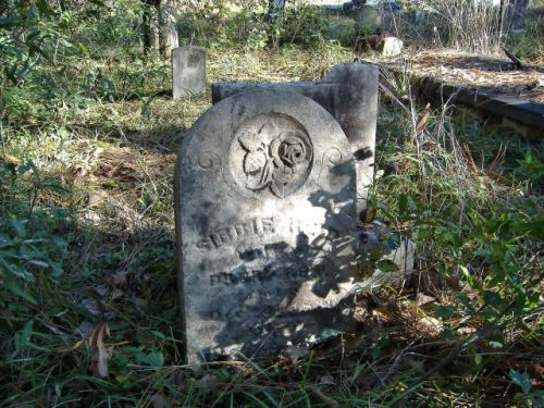 Sibbie GA Wilcox County Cemetery Headstone of Sibbie Reid Photograph Copyright Brian Brown Vanishing South Georgia USA 2016