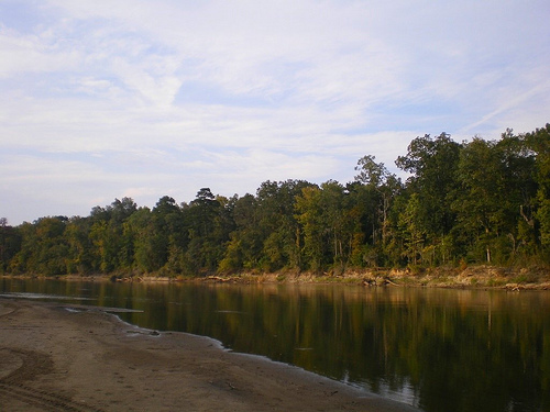 Ocmulgee river at mobley bluff ben hill county landing photograph copyright brian brown vanishing south georgia usa 2008