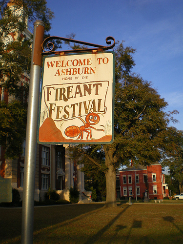 ashburn ga fire ant festival sign courthouse lawn photograph copyright brian brown vanishing south georgia usa 2008