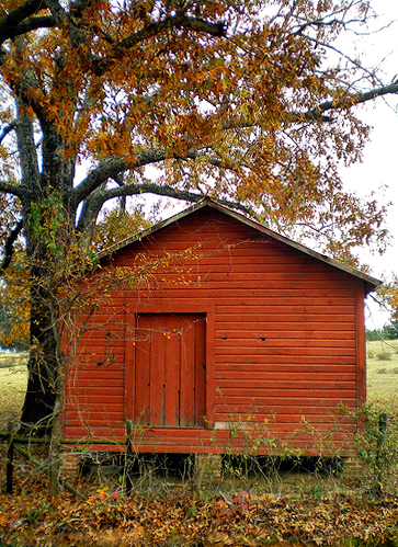 forest glen ga wilcox county red barn photograph copyright brian brown vanishing south georgia usa 2008