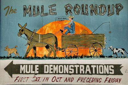 mule-roundup-sign-guysie-ga-photograph-copyright-brian-brown-vanishing-south-georgia-usa-2009