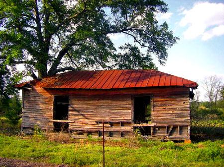 Vernacular Architecture on Colquitt County Ga Abandoned Tenant Farmhouse Vernacular Architecture