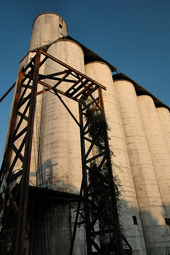 fitzgerald ga benny anderson grain elevator photograph copyright brian brown vanishing south georgia usa 2009