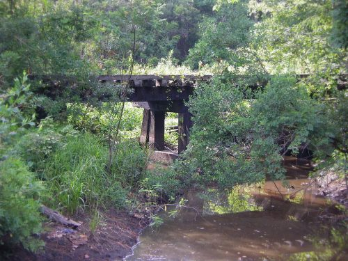 Vanishing South Georgia Atlantic Coast Line Railroad RR Trestle Cotton Mills Fitzgerald Ben Hill County GA Creek Wiregrass Southern Agriculture Photograph Photo Image