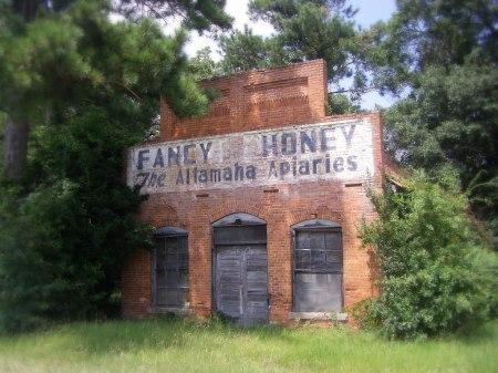 Vanishing South Georgia Gardi Wayne County GA Abandoned Country Store Fancy Honey Altamaha Apiaries Photograph Image Sign Apiculture Copyright Brian Brown