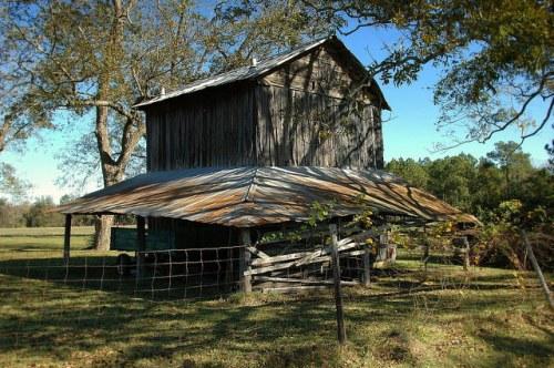tift county ga ferry lake road tobacco barn photograph copyright brian brown vanishing south georgia usa 2009