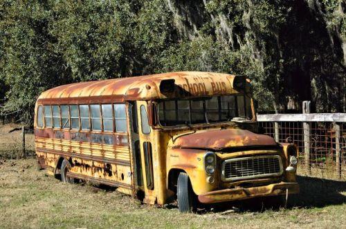 long-county-ga-school-bus-stafford-dairy-road-photograph-copyright-brian-brown-vanishing-south-georgia-usa-2010