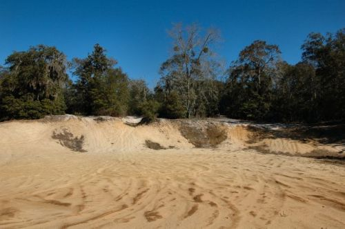 irwin county ga alapaha river sand dunes photograph copyright brian brown vanishing south georgia usa 2010
