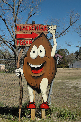 blackshear pecan sign photograph copyright brian brown vanishing south georgia usa 2010