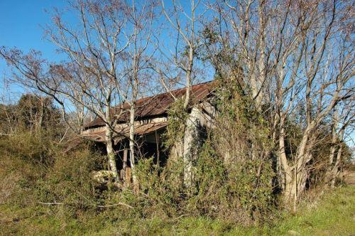 irwin county ga abandoned farmhouse crape myrtle road photograph copyright brian brown vanishing south georgia usa 2010