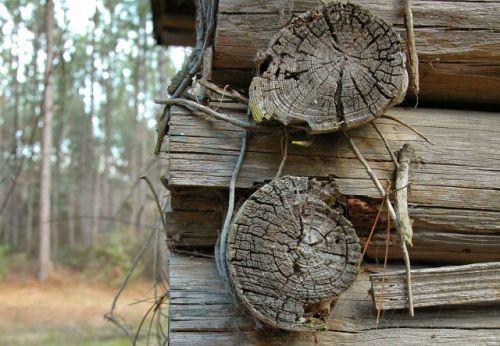 long county ga tobacco barn log joinery photograph copyright brian brown vanishing south georgia usa 2010
