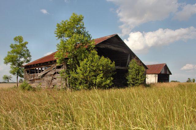 rebecca ga barns photograph copyright brian brown vanishing south georgia usa 2010