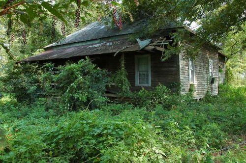 atkinson county ga pyramidal roof farmhouse photograph copyright brian brown vanishing south georgia usa 2010