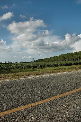 North Georgia Country Roads | Vanishing North Georgia ... |Georgia Country Roads