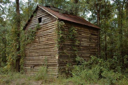 coffee county ga log tobacco barn photograph copyright brian brown vanishing south georgia usa 2010