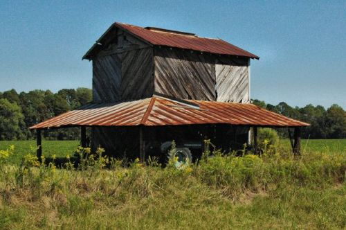 ritch ga wayne county tobacco barn photograph copyright brian brown vanishing south georgia usa 2010