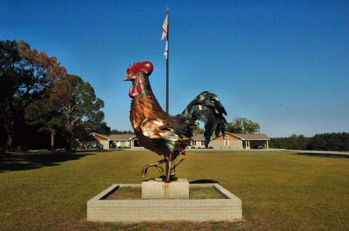 stillmore ga chicken sculpture photograph copyright brian brown vanishing south georgia usa 2010