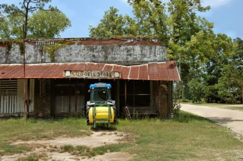 cogdell ga store photograph copyright brian brown vanishing south georgia usa 2011