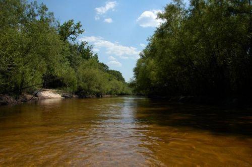ohoopee river tattnall county ga photograph copyright brian brown vanishing south georgia usa 2011