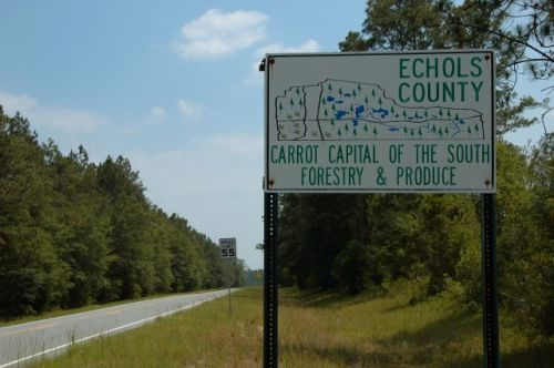 echols county line carrot sign photograph copyright brian brown vanishing south georgia usa 2011