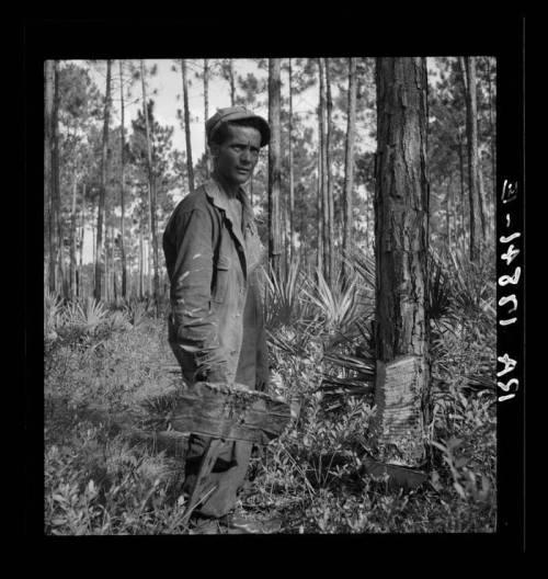 oscar hodges turpentiner homerville ga photograph courtesy jesse reavis steedley