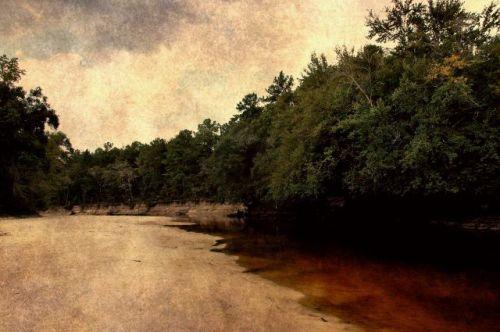 alapaha-river-bannockburn-ga-photograph-copyright-brian-brown-vanishing-south-georgia-usa-2011