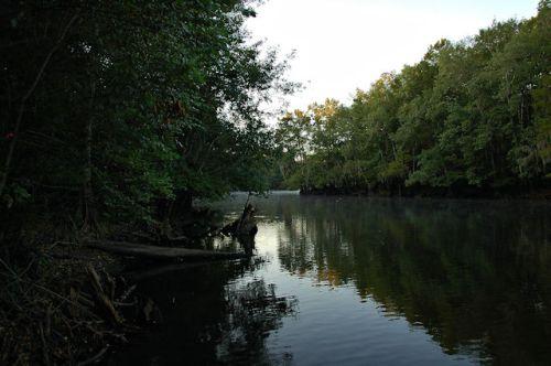 middleton-lake-altamaha-river-ga-photograph-copyright-brian-brown-vanishing-south-georgia-usa-2011