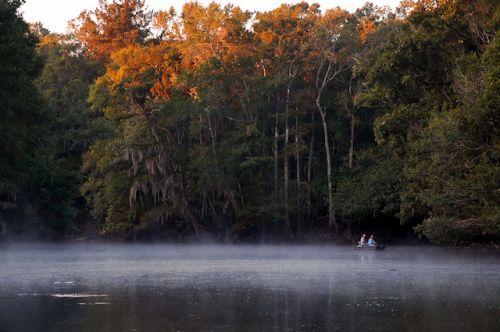 middleton-lake-long-county-ga-photograph-copyright-brian-brown-vanishing-south-georgia-usa-2011