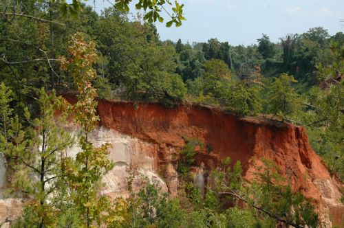providence-canyon-stewart-county-ga-photograph-copyright-brian-brown-vanishing-south-georgia-usa-2011