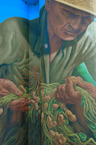 the-peanut-farmer-mural-colqutt-ga-photograph-copyright-brian-brown-vanishing-south-georgia-usa-2011