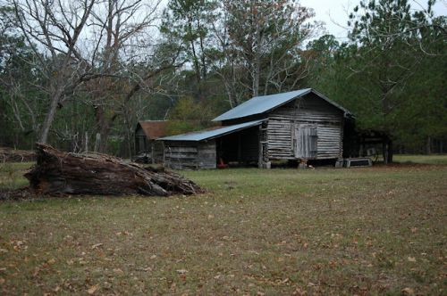 tattnall-county-ga-stripling-farm-log-barn-photograph-copyright-brian-brown-vanishing-south-georgia-usa-2011