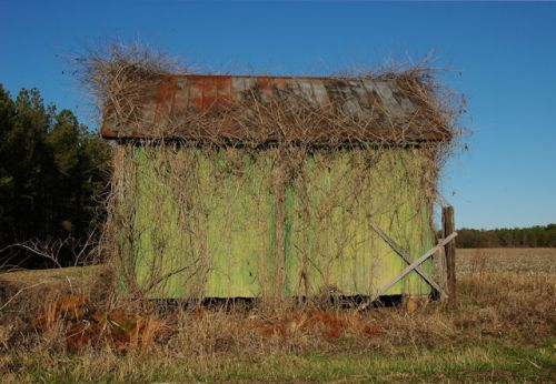 ogeechee-ga-green-barn-photograph-copyright-brian-brown-vanishing-south-georgia-usa-2011