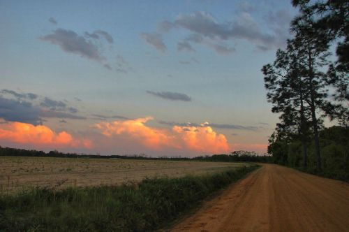 ben-hill-county-ga-youngs-chapel-road-photograph-copyright-brian-brown-vanishing-south-georgia-usa-2012