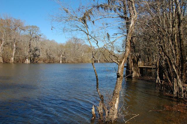 half-moon-lake-altamaha-river-appling-county-ga-photograph-copyright-brian-brown-vanishing-south-georgia-usa-2012
