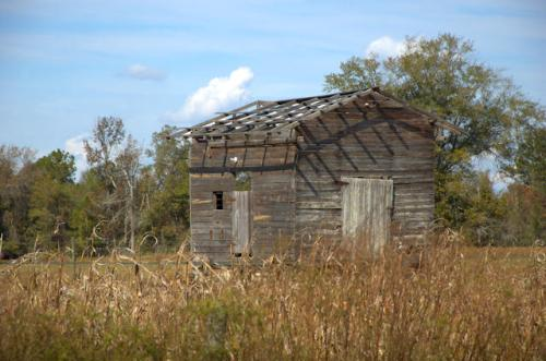jeff-davis-county-ga-corn-crib-photograph-copyright-brian-brown-vanishing-south-georgia-usa-2012