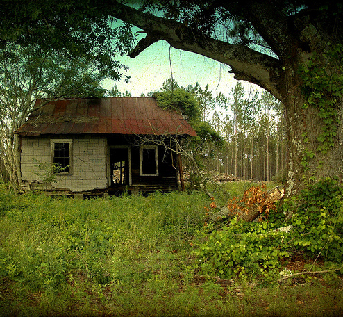 wheeler-county-ga-tenant-farmhouse-photograph-copyright-bian-brown-vanishing-south-georgia-usa-2012
