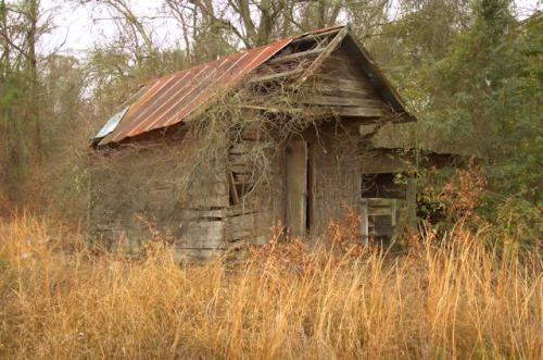 pine-grove-ga-smokehouse-photograph-copyright-brian-brown-vanishing-south-georgia-usa-2012
