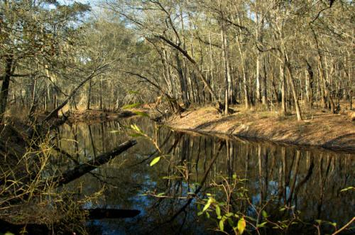 canoochee-river-claxton-ga-photograph-copyright-brian-brown-vanishing-south-georgia-usa-2013