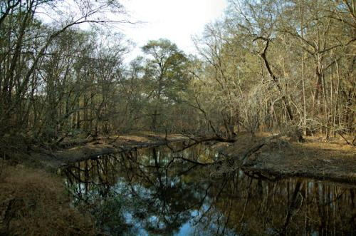 canoochee-river-rocks-river-park-claxton-ga-photograph-copyright-brian-brown-vanishing-south-georgia-usa-2013