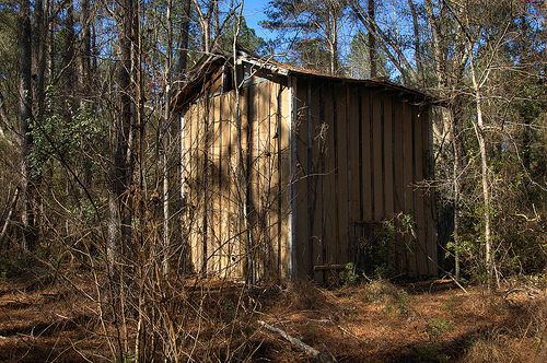 Long County GA Highway 196 Abandoned Flue Cure Tobacco Barn Overgrown Nature Woods Southern Gothic Picture Image Photograph © Brian Brown Vanishing South Georgia USA 2013