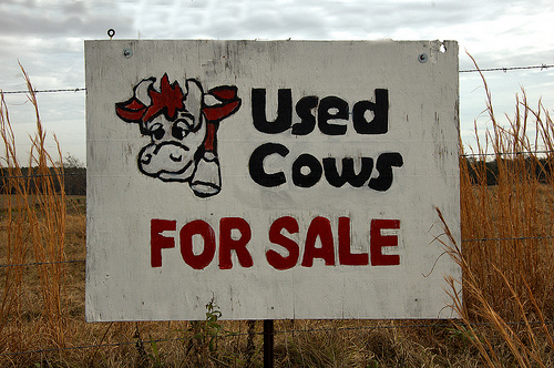 Used Cows for Sale Sign Whimsical Comical Funny Highway 133 Brooks County GA Picture Image Photo © Brian Brown Vanishing South Georgia USA 2013