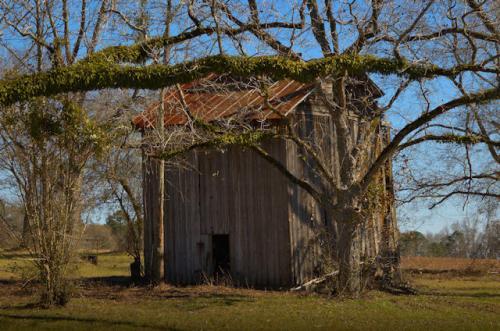 new-branch-ga-tobacco-barn-photograph-copyright-brian-brown-vanishing-south-georgia-usa-2013