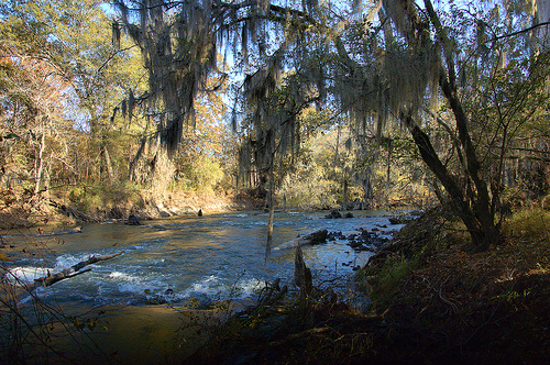 Ocmulgee river oxbow little river near poor robin spring for Fishing access near me