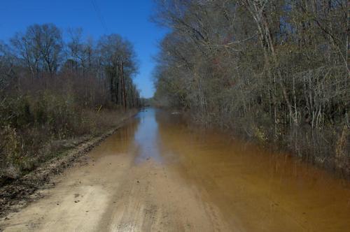 ohoopee-river-flooding-impassable-road-tattnall-county-ga-photograph-copyright-brian-brown-vanishing-south-georgia-usa-2013