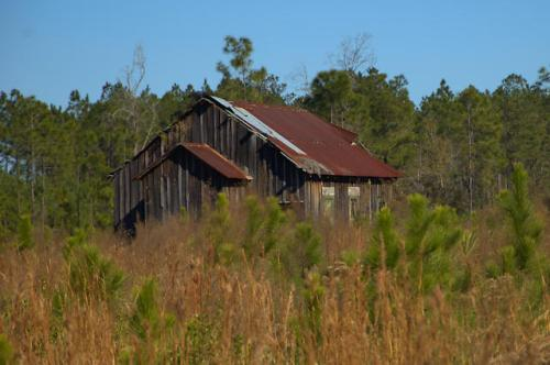 toledo-ga-logging-camp-church-school-photograph-copyright-brian-brown-vanishing-south-georgia-usa-2013