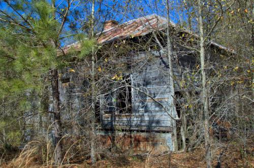 toombs-county-ga-pyramidal-roof-tenant-house-photograph-copyright-brian-brown-vanishing-south-georgia-usa-2013
