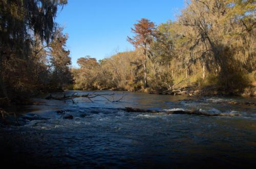 wilcox-county-ga-little-river-oxbow-ocmulgee-river-photograph-copyright-brian-brown-vanishing-south-georgia-usa-2013