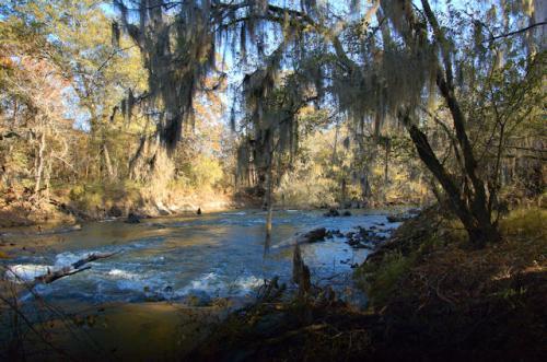 wilcox-county-ga-ocmulgee-river-oxbow-lake-photograph-copyright-brian-brown-vanishing-south-georgia-usa-2013