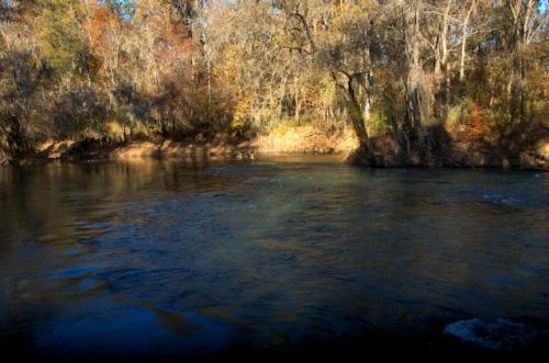 wilcox-county-ga-ocmulgee-river-photograph-copyright-brian-brown-vanishing-south-georgia-usa-2013